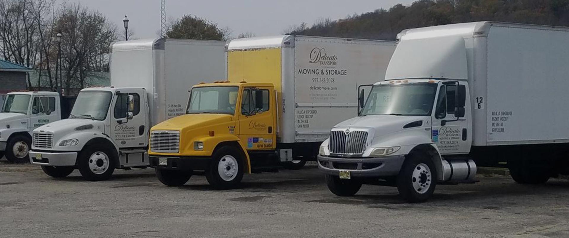 Delicato Transport, LLC
